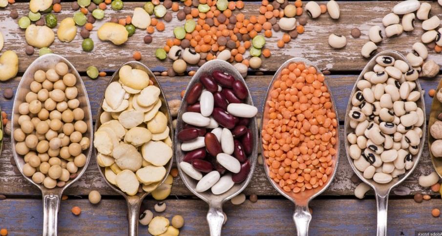 Nutrition: les protéines végétales